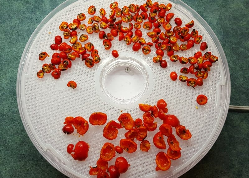 Dry rose hips by using a dehydrator or spreadin on a cloth in the sun.