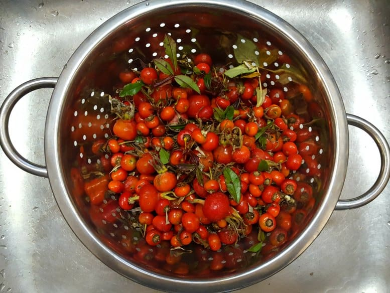 Wash the rose hips before triming the tops and bottoms off them