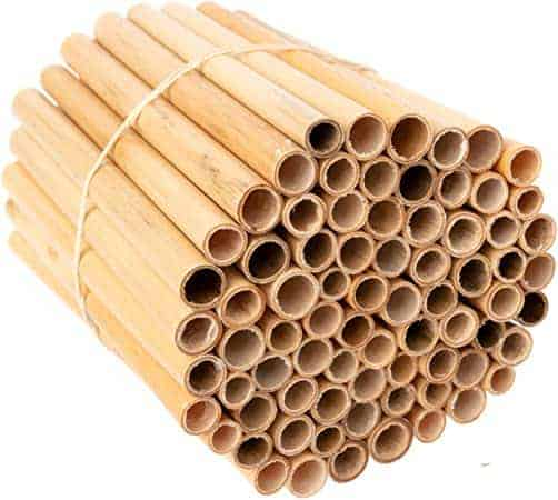 insect nesting tubes in a bundle